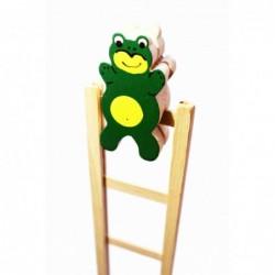 Frosch mit Leiter